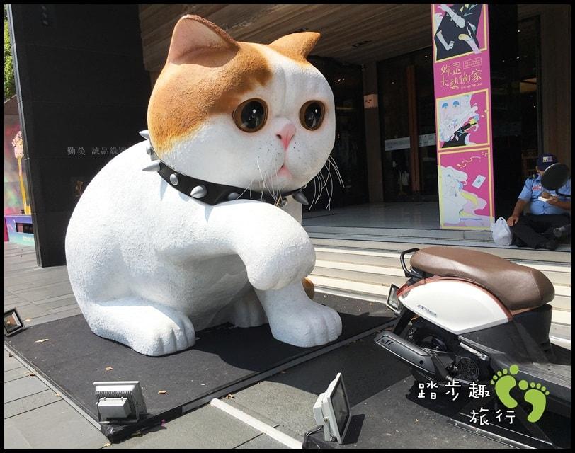 勤美貓00
