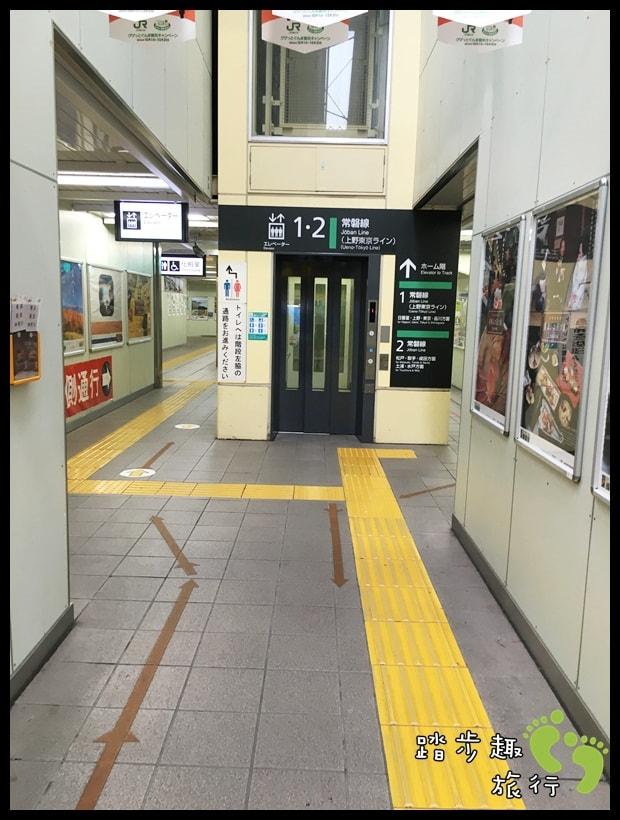 Wasabi民宿27